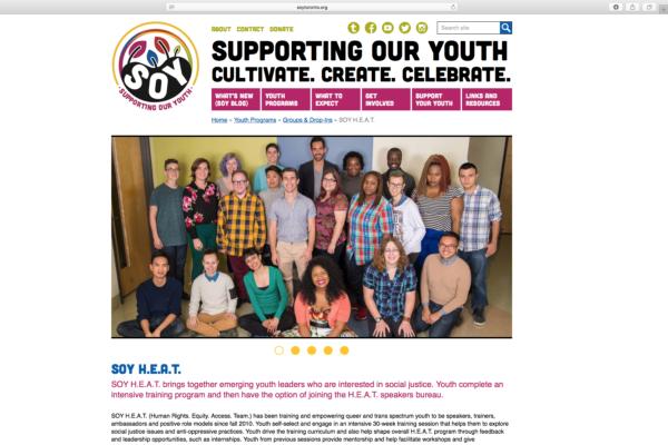 Soy01 Logowebsite Screenshot1
